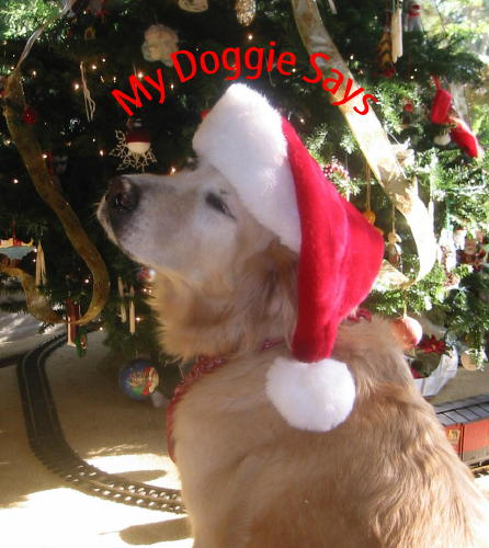 Golden Retriever Merry Christmas